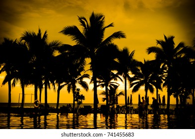 silhouette coconut palm trees at sunset. Vintage tone