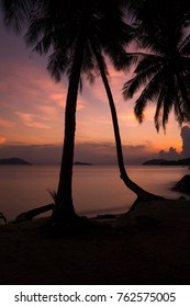 Silhouette coconut tree on the beach in the morning, long exposure