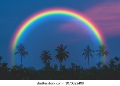 Silhouette coconut tree on sunrise sky with rainbow