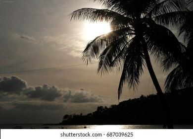 Silhouette of coconut tree and sunset sky in the cloudy days at Lombok island.