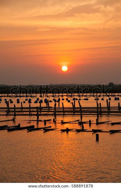 Silhouette coop in water with sunset at Bang Khun Thien, Bangkok coast, Thailand