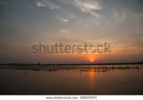 Silhouette coop in water with sunset at Bang Khun Thien, Bangkok coast, Thailand