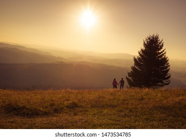 Silhouette of a couple holding hands in Beskity Polish mountains standing by a single tree at sunset - Poland