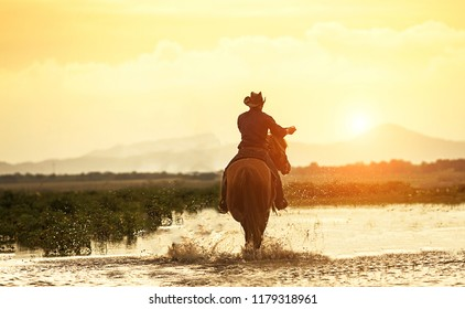 Silhouette Cowboy on horseback. Ranch