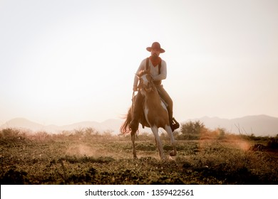 Silhouette Cowboy riding a horse  under beautiful sunset