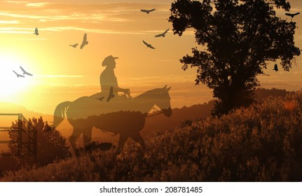 A silhouette of a cowboy riding in the sunset on a hill with grass in yellow and orange.