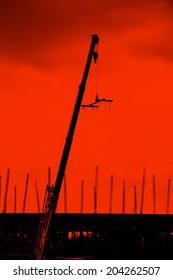 Silhouette Crane construction