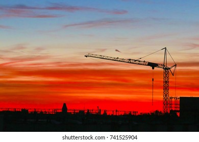 Silhouette of a Crane at sunset