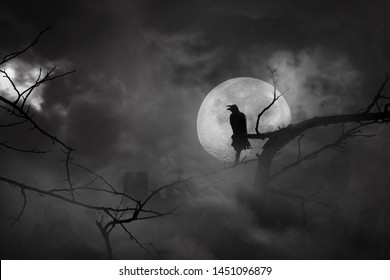 Silhouette of crow perched on tree branches in city abandonment and moon at midnight with bright and dark clouds, concept of scary and horror