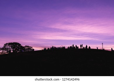 Silhouette of a crowd on Primrose Hill against a purple sunset sky