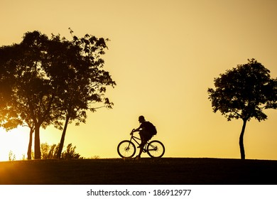 silhouette of the cyclist sitting on his bike at sunset