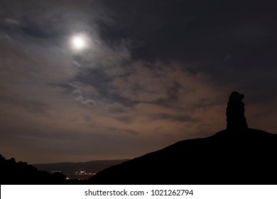 Silhouette of the dog under the light of the moon on top of the mountain.