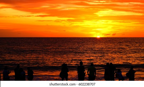 Silhouette during sunset at beach / A silhouette is the image of a person, animal, object or scene represented as a solid shape of a single color, usually black, with its edges matching the outline