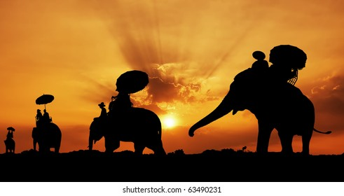 silhouette of elephants in thailand