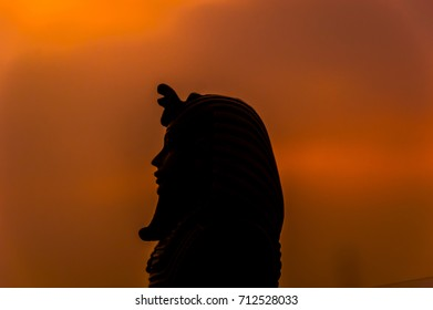 Silhouette of face