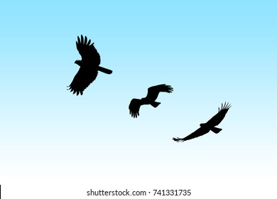 Falcon Silhouette Images, Stock Photos & Vectors ...