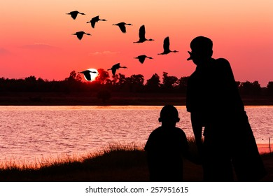 silhouette of father and son point look at to teal bird fly on sky and on river sunset