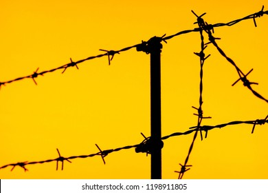 silhouette of a fence of barbed wire on an yellow sky background