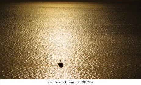 silhouette of fisherman boat with sunset background