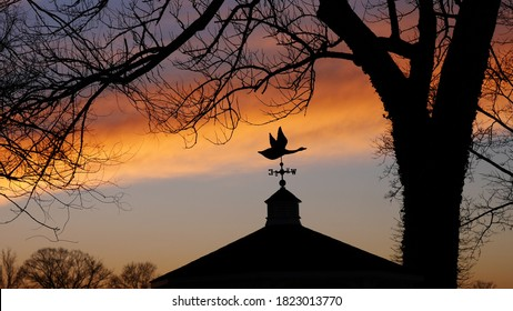 Silhouette of a flying bird weathervane against an orange blue purple clouds at sunset sky