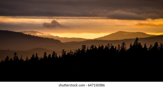 Silhouette of foggy forest during sunset in Alaska
