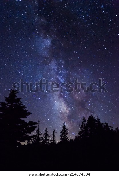 Silhouette of giant evergreen trees in front of the Milky Way at Glacier Point in Yosemite National Park