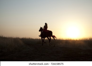 Silhouette girl and horse in field. Young woman riding a stallion