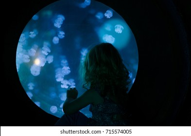 A silhouette of a girl looking at jelly fish in an aquatic tank