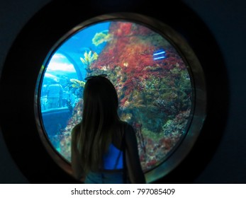 A silhouette of a girl looking through a window of the aquarium