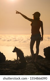 Silhouette of girl with puppy on sunset