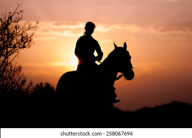 Silhouette of a girl riding a horse rider on the background of the rising sun