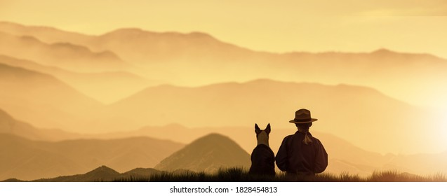 a silhouette Girl sit on top of a Mountain with a dog during a golden sunset.