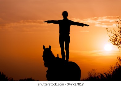 silhouette of a girl standing on a horse on a background of sunset and sunrise. The rider performs a trick. The man straightened his arms like wings