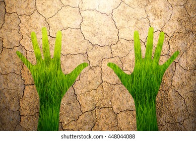 silhouette Hand with green rice field background inside on clay crack background