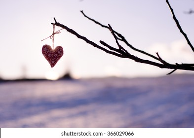 silhouette of homemade hearts in nature during calm winter sunset - original background for valentines day postcard