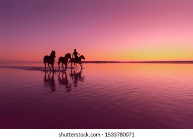 Silhouette of horses and man running on the water at sunset. Salt Lake - Sereflikochisar / Turkey
