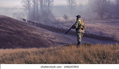 Silhouette of a hunter against the backdrop of a rural evening landscape with sheep. Stands at the ready with a gun.