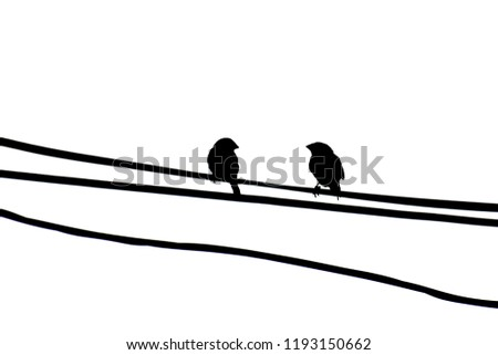 Silhouette Image Little Birds Grab On Stock Photo (Edit Now