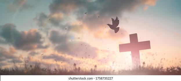 Silhouette jesus christ crucifix on cross on calvary sunset background concept for good friday he is risen in easter day, good friday jesus death on crucifix, world christian and holy spirit religious