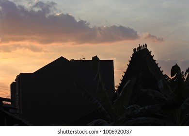 silhouette of joglo house