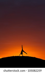 silhouette of kid doing a cartwheel in sunset