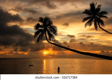 Silhouette of leaning palm trees and a woman at sunrise on Taveuni Island, Fiji. Taveuni is the third largest island in Fiji.
