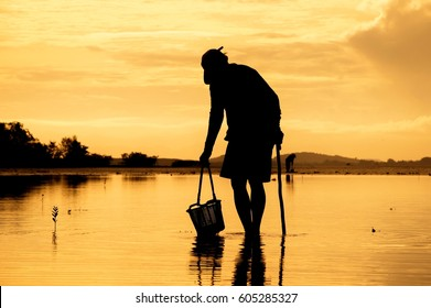 Silhouette of local fisherman finding the shell in the sea at sunset