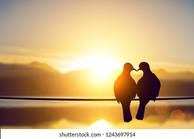silhouette of the love birds in heart shape on pastel background in lens flare warm light and Valentine's Day concept