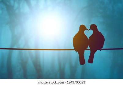 silhouette of the love birds in heart shape on Blue pastel background in lens flare and Valentine's Day concept