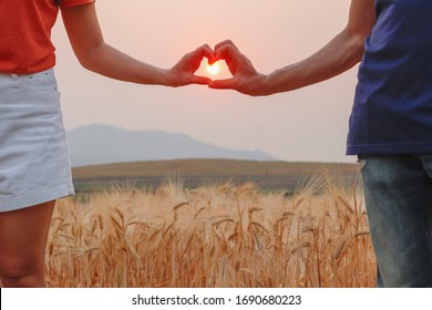 The silhouette of a lover uses a heart-shaped symbol above the golden barley fields to symbolize friendship, love, and compassion. Showing Love and Friendship over the Golden Barley Fields