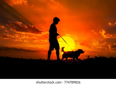 Silhouette of man and dog walking on sunset background.