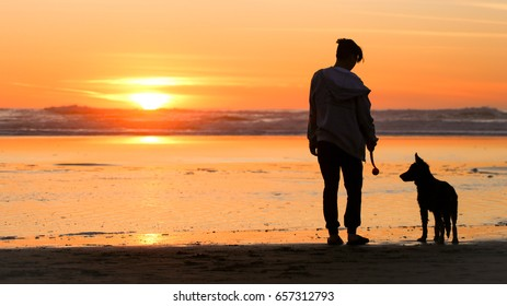 silhouette of a man with his puppy on the beach at sunset