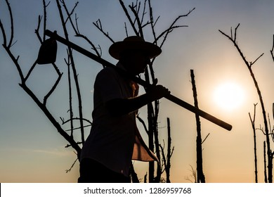 silhouette of man with hoe, background with dry trees and sky without clouds and strong sun