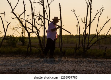 silhouette of man with hoe, background with dry trees